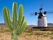 All inclusive vakantie Canarische Eilanden