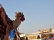 Zomervakantie Hurghada