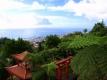 Aanbiedingen Madeira