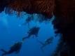 Vakantie Sharks Bay